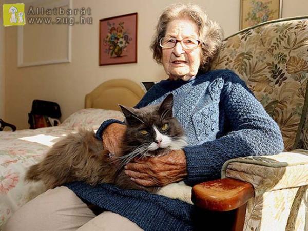 Az idősek otthonába is követte gazdiját a cicus