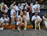 Megrendezésre került az első White Dog Party Magyarországon