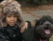 Kutyája mentette meg a fagyhaláltól az eltévedt 7 éves kisfiút