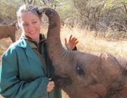 Pótmamájukként szeretik az elefántbébik az őket megmentő lányt
