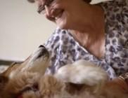 Kutyája szagolta ki a gazdi mellrákját