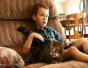 A család macskája mentette meg a kisfiút a rátámadó kutyától
