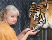 Kézből eteti tigriseit és akár be is fekszik közéjük az 57 éves asszony