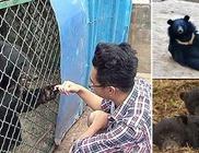 Házikedvenceit kutyának hitte, aztán kiderült, hogy medvék